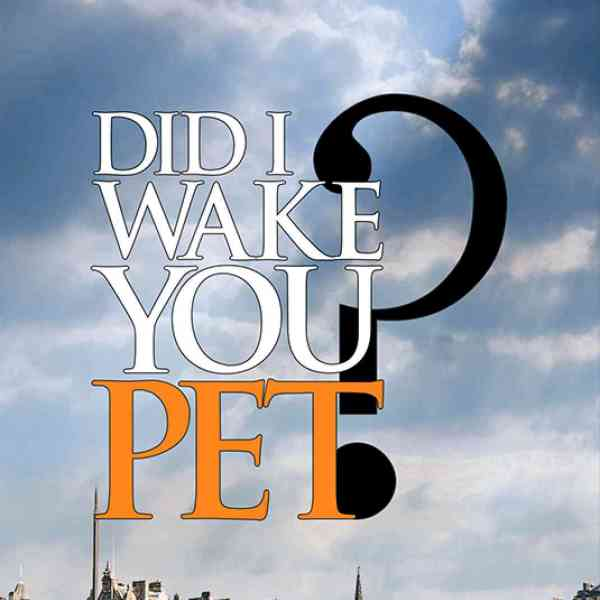 Phoenix FM talks to Author Fiona Bowman about her book 'Did I Wake You Pet?'