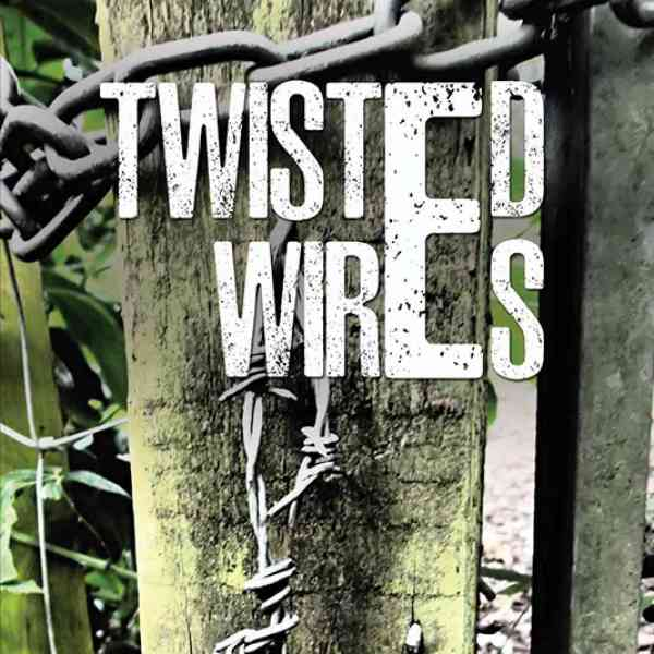 The book cover of Twisted Wires
