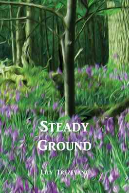 Steady Ground