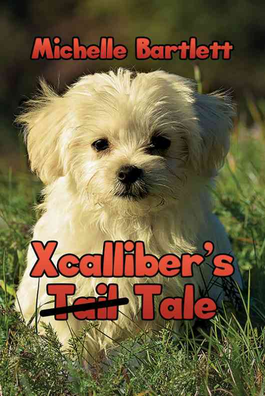 Xcalliber's Tale