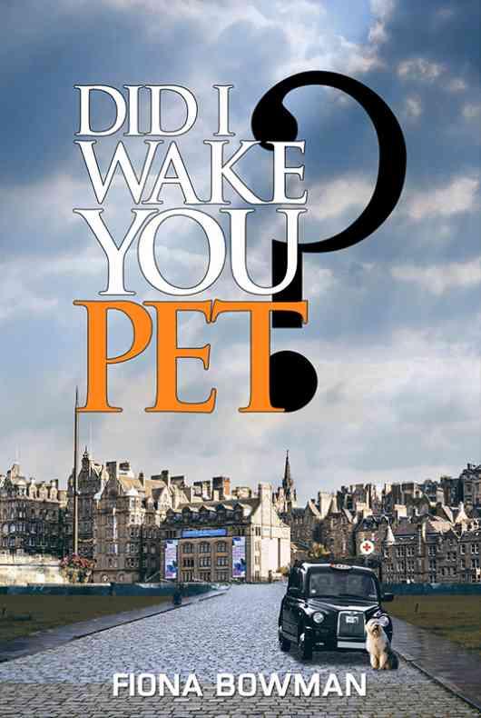 Did I Wake You, Pet?