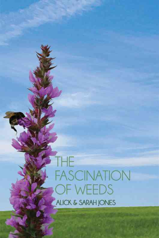 The Fascination of Weeds