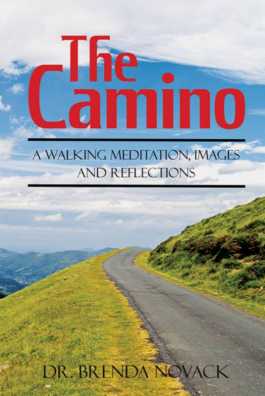 The Camino: A Walking Meditation; Images and Reflections