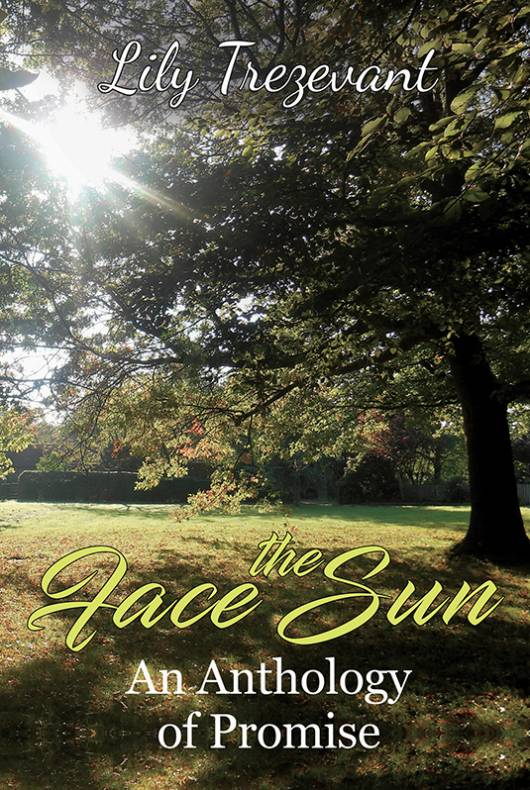 Face the Sun: An Anthology of Promise